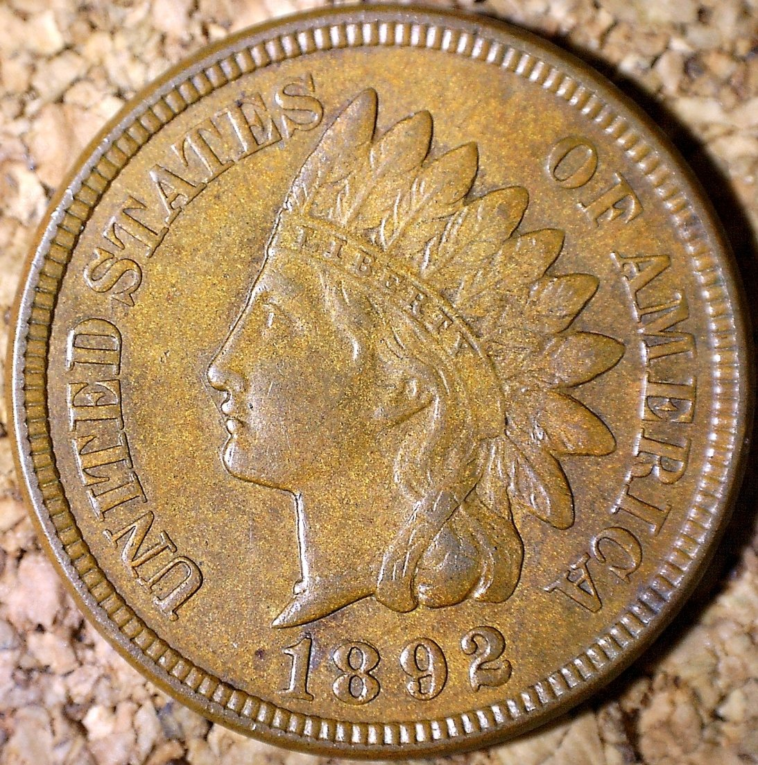 1892 RPD-001 - Indian Head Penny - Photo by David Killough