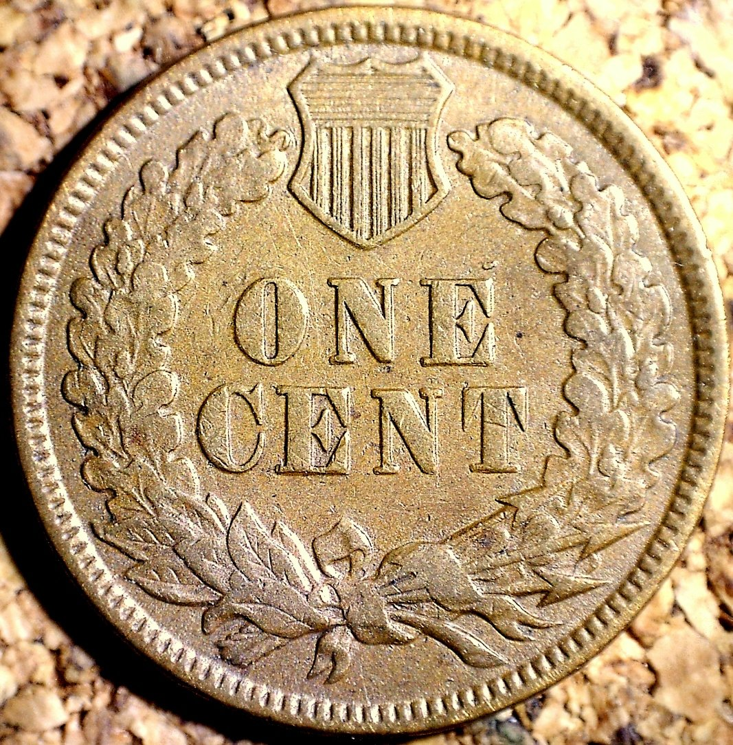 1880 ODD-004 - Indian Head Penny - Photo by David Killough
