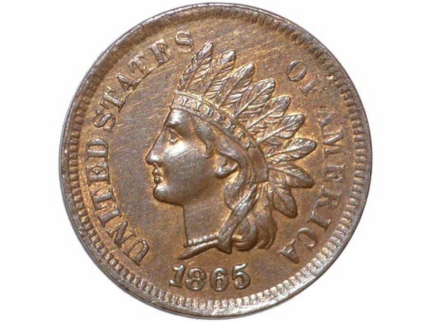 1865 Plain 5 RPD-011 - Indian Head Penny - Photo by David Poliquin