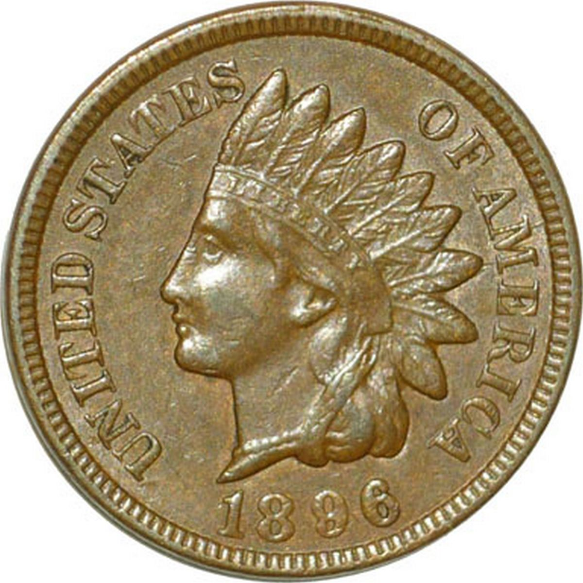 1896 RPD-025 - Indian Head Penny - Photo by David Poliquin