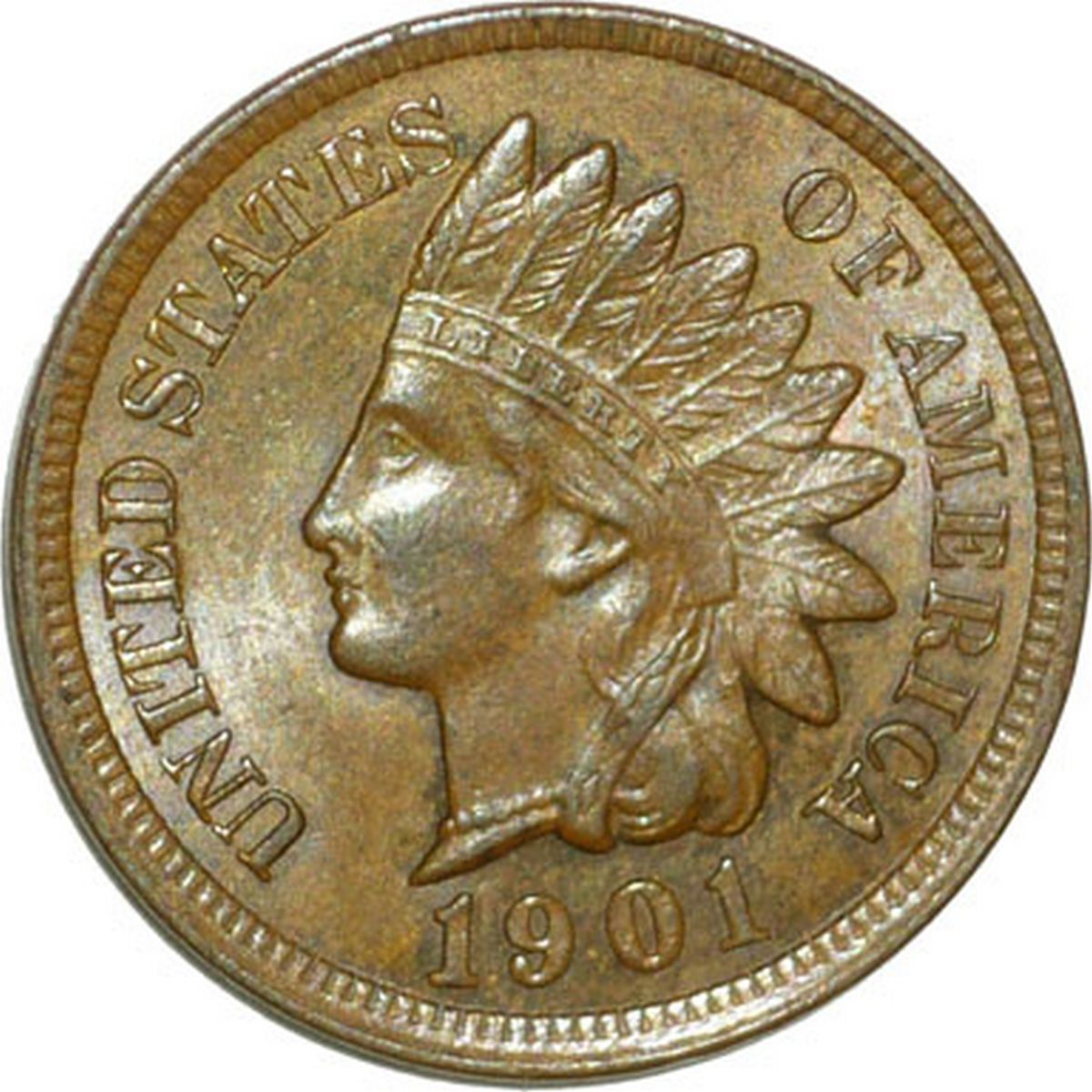 1901 RPD-024 - Indian Head Penny - Photo by David Poliquin